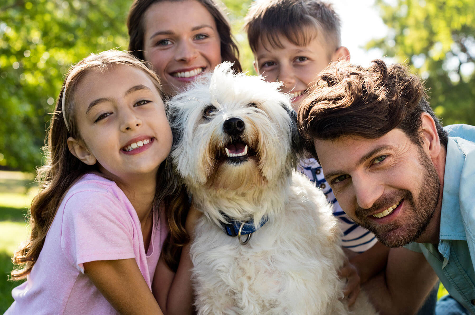 Benefits of taking your dog to obedience training